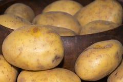 Frische Kartoffel vom Landwirt #7 Stockfotografie