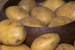 Frische Kartoffel vom Landwirt #6 Lizenzfreie Stockfotografie