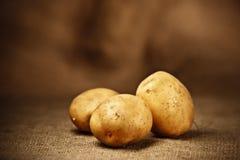 Frische Kartoffeln Lizenzfreie Stockbilder