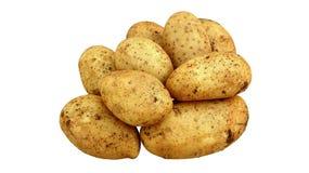 Frische Kartoffeln lokalisiert Lizenzfreie Stockbilder