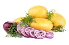 Frische Kartoffeln mit Zwiebel Stockfotografie