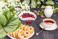 Frische Kekse des Tees mit Kirschen Lizenzfreies Stockfoto