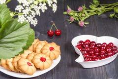 Frische Kekse des Tees mit Kirschen Stockbild