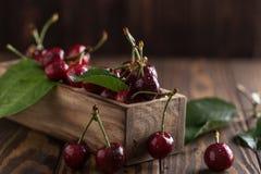 Frische Kirsche mit Wasser fällt auf rustikalen hölzernen Hintergrund Neuer Kirschhintergrund Gesundes Nahrungsmittelkonzept Lizenzfreies Stockfoto