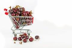 Frische Kirschen in einem Warenkorb Stockbilder