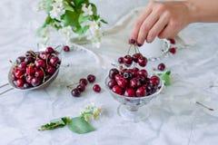 Frische Kirschfrucht im Glasvase, andere Teller mit Beeren und Glas mit Jasmin und Wildflowers auf der hellen Marmortabelle frau Stockfotos