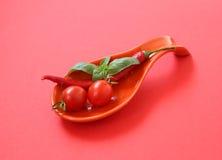 Frische Kirschtomaten und -paprika auf roter Platte Lizenzfreie Stockfotos
