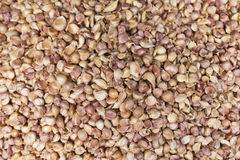Frische Knoblauch in einem Markt Lizenzfreies Stockfoto