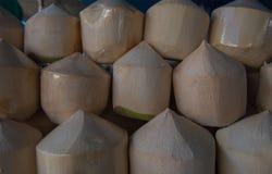 Frische Kokosnüsse der Reihen im Markt Frische Kokosnuss der tropischen Frucht im Markt Stockbild