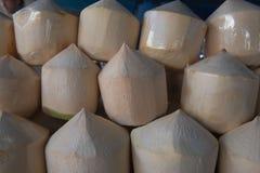 Frische Kokosnüsse der Reihen im Markt Frische Kokosnuss der tropischen Frucht im Markt Stockfoto