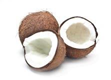 Frische Kokosnuss Lizenzfreies Stockfoto