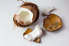 Frische Kokosnuss am weißen Hintergrund Stockbild