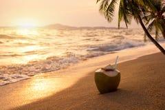 Frische Kokosnusscocktails auf sandigem tropischem Strand zur Sonnenuntergangzeit Stockfoto