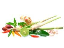 Frische Kräuter und Gewürze lokalisiert auf weißem Hintergrund Lizenzfreies Stockfoto