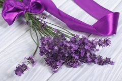 Frische Lavendelblumen mit purpurrotem Band Stockfoto