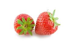 Frische lokalisierte Erdbeere Lizenzfreie Stockfotografie