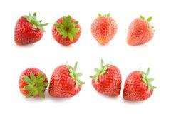 Frische lokalisierte Erdbeere Stockfotografie