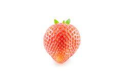 Frische lokalisierte Erdbeere Lizenzfreie Stockfotos