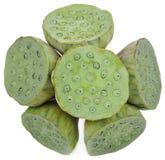 Frische-Lotus-Samen und -seedpod lokalisiert auf weißem Hintergrund stockfoto