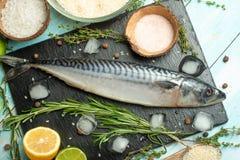 Frische Makrele auf einem schwarzen Schieferstein mit Gewürzen, Kräutern, Zitrone, Kalk und Salz Ansicht von oben lizenzfreies stockbild