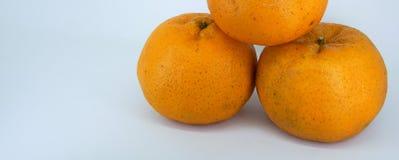 Frische Mandarine Stockbilder