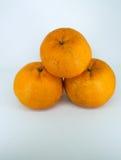 Frische Mandarine Lizenzfreie Stockfotos