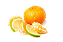 Frische Mandarine und Kalk Lizenzfreies Stockbild