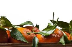 Frische Mandarinen in der alten hölzernen Kiste lokalisiert Stockbild