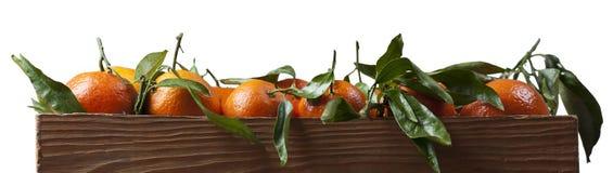 Frische Mandarinen in der alten hölzernen Kiste lokalisiert Lizenzfreie Stockfotos