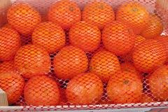 Frische Mandarinezitrusfrüchte auf einem Markt Stockfotos