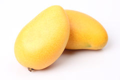 Frische Mango Stockfotos