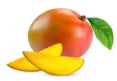 Frische Mangofruchtfrucht lizenzfreies stockbild