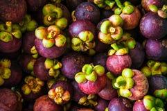 Frische Mangostanfrüchte Stockbild