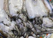 Frische Meeresfrüchte Lizenzfreies Stockbild