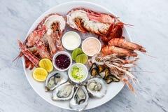 Frische Meeresfrüchteservierplatte mit Hummer, Miesmuscheln und Austern Stockbilder