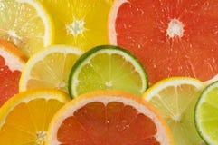 Frische Mehrlagenplatte der Zitrusfrucht Stockfoto