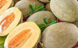 Frische Melone Stockbild