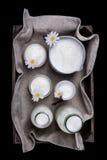 Frische Milchprodukte in der alten hölzernen Kiste Lizenzfreies Stockbild