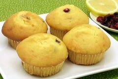 Frische Muffins lizenzfreie stockfotos