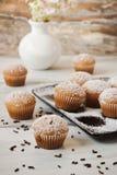 Frische Muffins Lizenzfreies Stockfoto