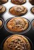 Frische Muffins in der Muffinwanne Lizenzfreie Stockfotografie