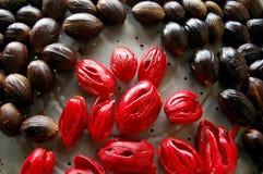 Frische Muskatnüsse mit der roten inneren Beplankung getrennt stockfoto