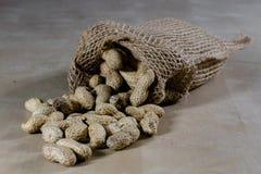 Frische Nüsse in einem Jutefaser bauschen sich auf einem hölzernen Küchentisch Italienische Haselnüsse in der Küche vor Weihnacht Stockfotos