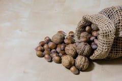 Frische Nüsse in einem Jutefaser bauschen sich auf einem hölzernen Küchentisch Italienische Haselnüsse in der Küche vor Weihnacht Lizenzfreie Stockbilder