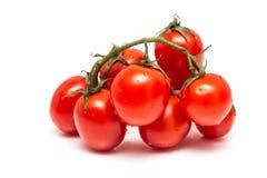 Frische nasse rote Tomaten Stockbild