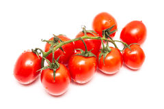 Frische nasse rote Tomaten Lizenzfreies Stockfoto