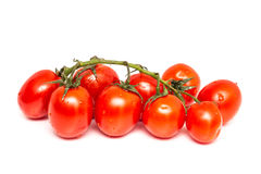 Frische nasse rote Tomaten Lizenzfreies Stockbild