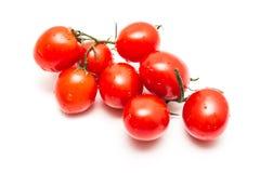 Frische nasse rote Tomaten Lizenzfreie Stockfotografie
