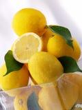 Frische nasse Zitrone mit grünem Blatt Lizenzfreies Stockfoto