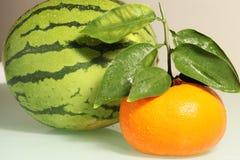 Frische Orange Stockbild